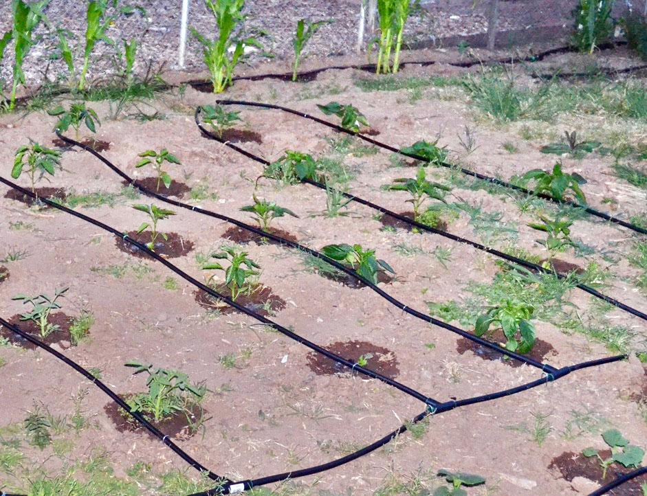 Пластмассовые трубы в системе полива