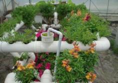 Система полива, для изготовления которой использовались полипропиленовые трубы, дешевле, удобна в установке, надежна и долговечна